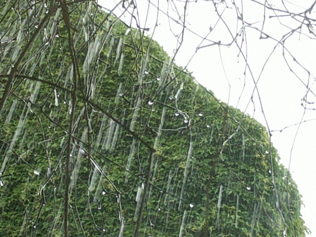 rain is the main source of water and sometimes water vapour - a principle